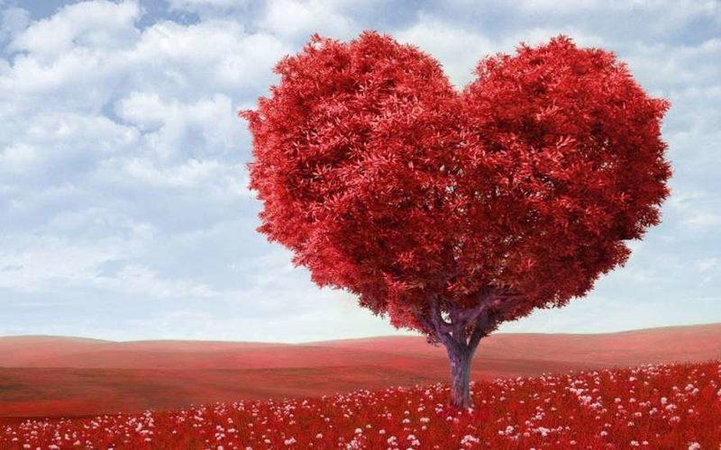 День Святого Валентина – история праздника, откуда к нам пришел