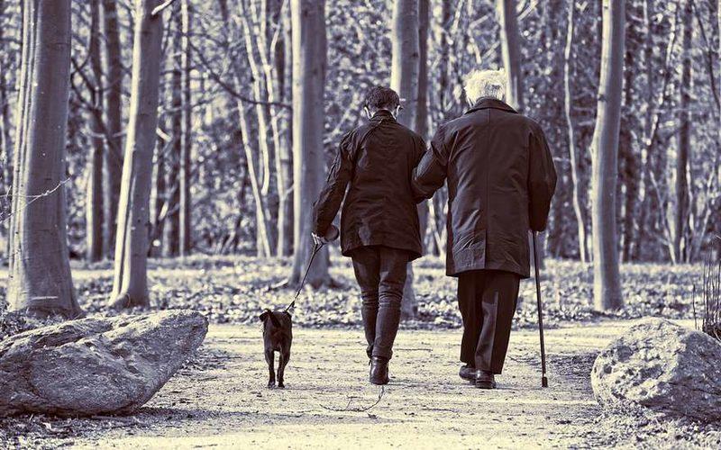 При каких условиях можно выйти на пенсию в 50 лет рассказали в ПФР