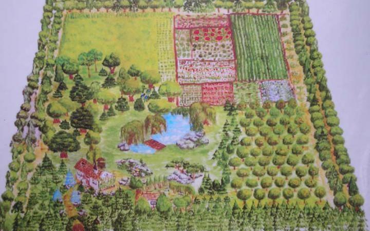 Как сажать деревья в родовом поместье 8