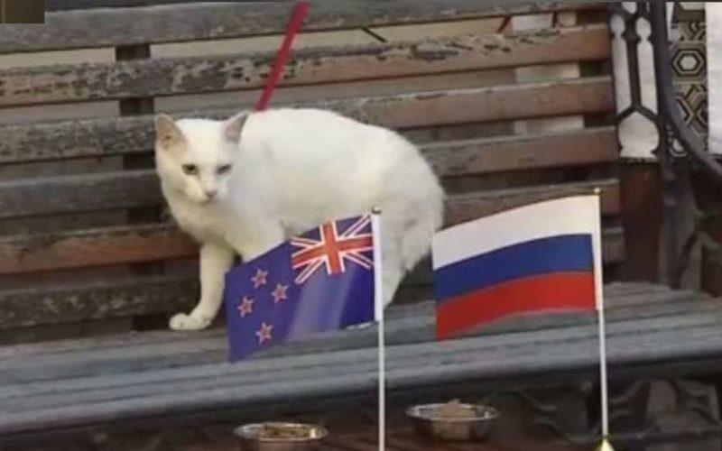 результат матча россия саудовская аравия