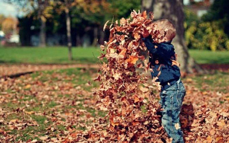 Мальчик с листьями
