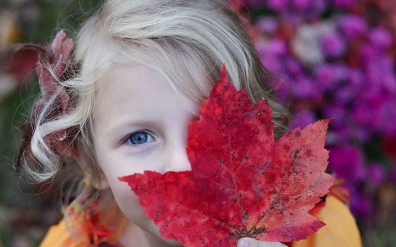 Девочка с кленовым листом