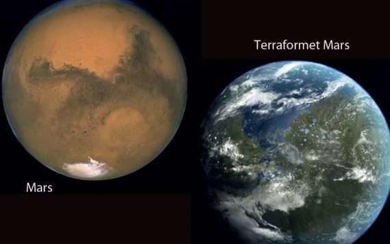в США создают растения для терраформирования Марса
