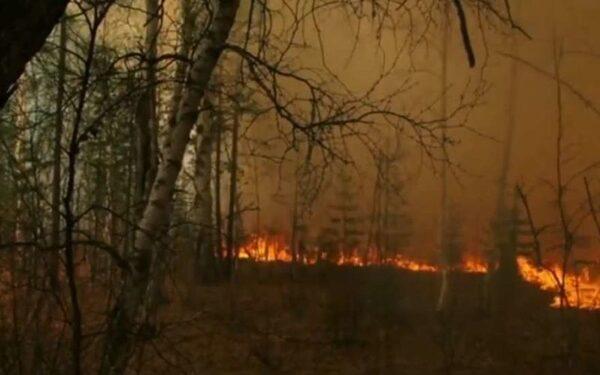 Пожары в Сибири в 2015 году
