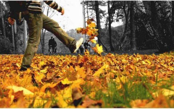 ежедневные пешие прогулки - залог долголетия