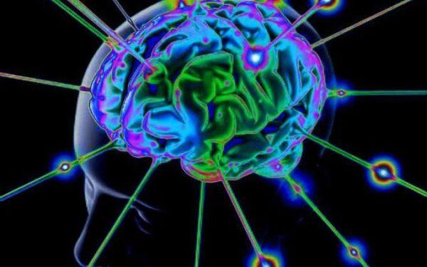 Интерактивная карта мозга покажет участки с недостатком серотонина