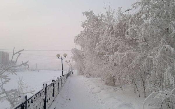 Дальний Восток: события, новости, главное, самое актуальное за сутки 30 января: Приморский край, Владивосток, Хабаровский край, Хабаровск, Благовещенск, Южно-Сахалинск ФОТО