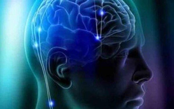 Ученые: Обнаружен отдел мозга отвечающий за совесть