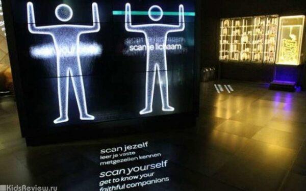 В Амстердаме заработал первый в мире музей микробов