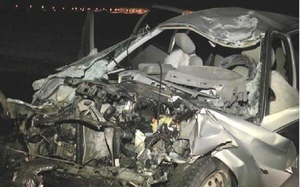 В Самаре ДТП: автоледи протаранила трактор на обочине – погибло два человека и собака (ФОТО)