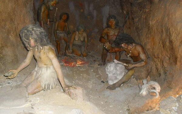 Иммунитетом современный человек обязан неандертальцам и денисовцам