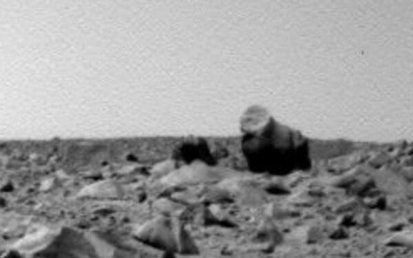 На Марсе найдены горилла и ее детеныш