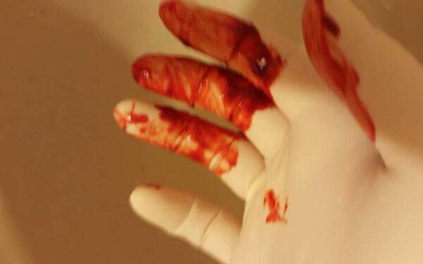 В Подмосковье жена зверски убила собственного мужа в супружеской ложе за измену