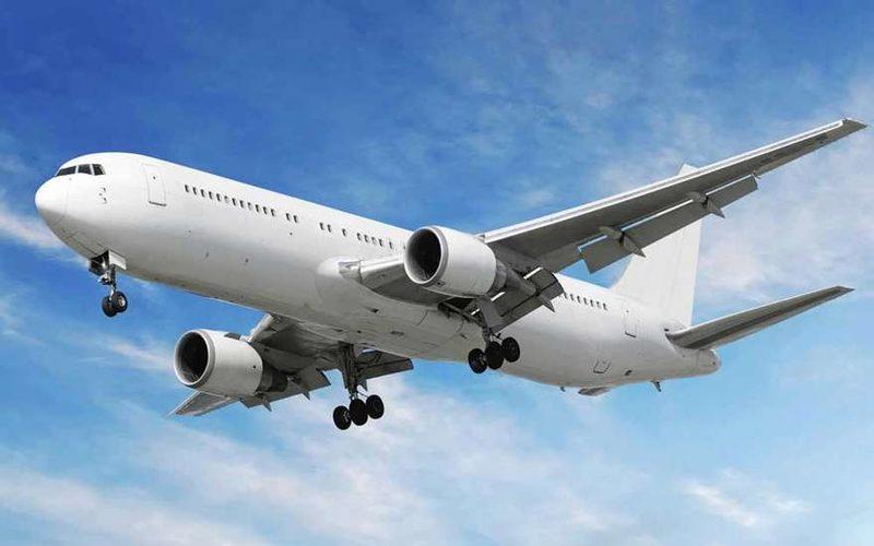 Москвичку арестовали в Индии за дебош на борту самолета