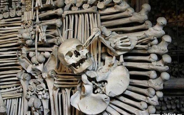 Ученые планируют создавать строительные материалы из костей человека