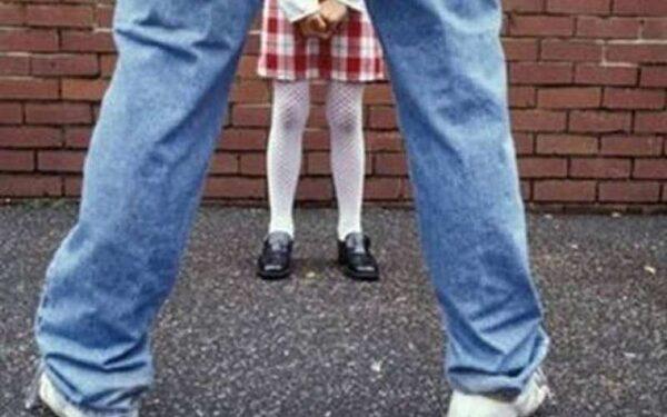 В Лужском районе педофил надругался над трехлетней девочкой