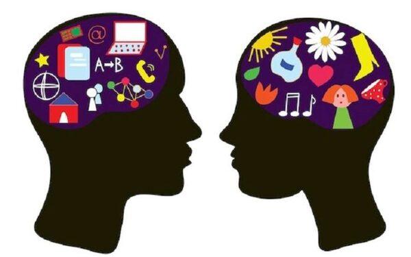 Ученые установили, что мозг мужчин и женщин работает по-разному