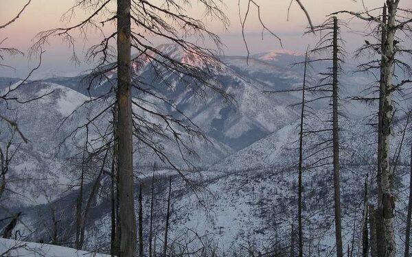 Дальний Восток, происшествия, новости сегодня 28 января, главное за сутки, самое интересное: Владивосток, Хабаровск, Благовещенск, Южно-Сахалинск, Якутск ФОТО