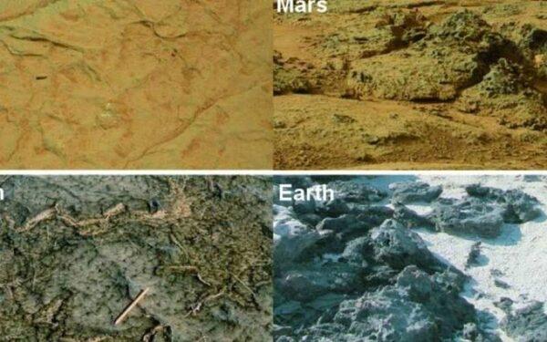 Обнаружено сходство в породах Марса и Земли