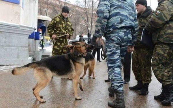Из двух школ Иваново из-за сообщений о минировании эвакуированы сотни школьников