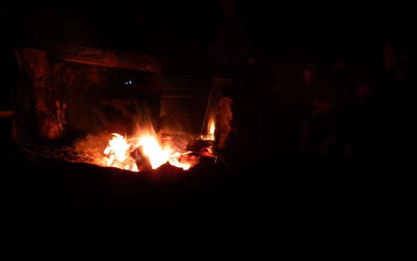 В Смоленской области на ферме загорелась ферма: погибли 33 теленка